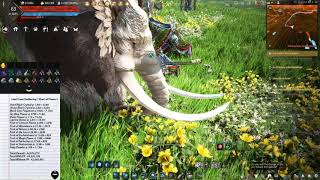Black Desert Online - 1 Hour Of Gathering Flowers At Navaran Steppe Up To 64M In A Hour