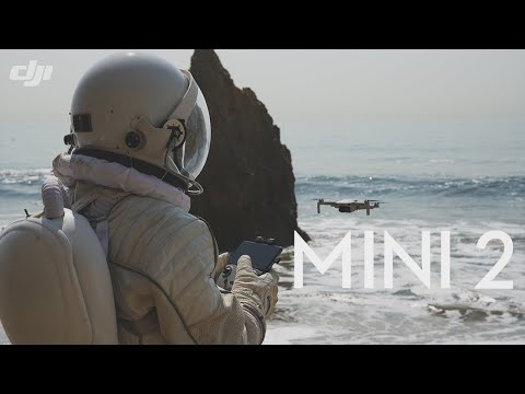 DJI - Mavic Mini 2