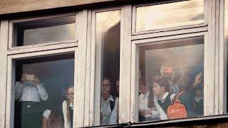 Олень заглядывает в окна школы