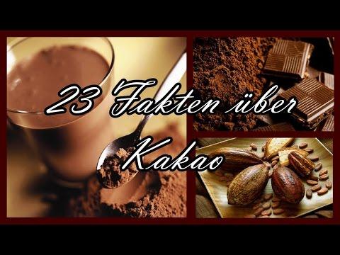 ✿ FOOD ABC ✿ 23 FAKTEN ÜBER KAKAO ✿ CAKAO ✿ DIE KLEINE COCO