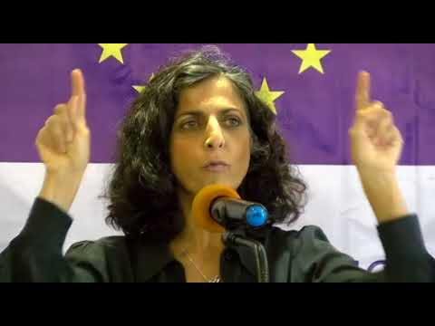Chief Observer Maria Arena about the role of the EU Election Observation Mission Liberia