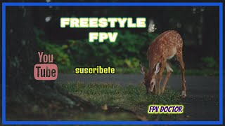 FreeStyle FPV Doctor.