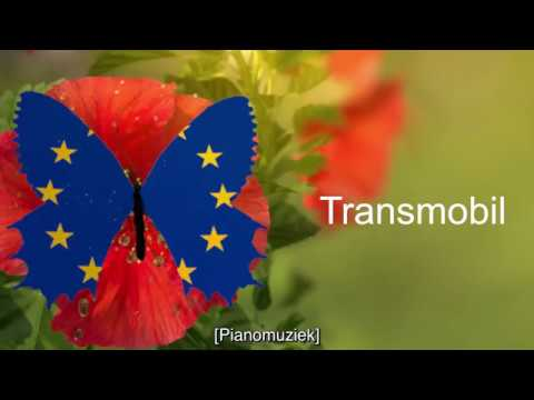 TRANSMOBIL : pour une mobilité transfrontalière en milieu rural