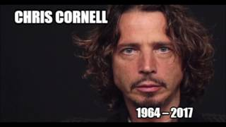 Chris Cornell * Pillow Of Your Bones    HQ