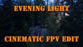 Evening Light | Cinematic FPV Drone Flight | Schwarzwald