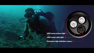 Tovatec Mera Dive Light & Camera