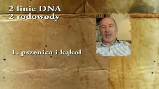 Historia Teorii Spiskowej 6000 lat kolonizacji od Edenu do Armagedonu