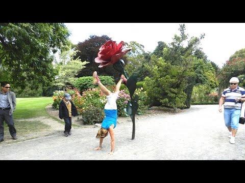 """Йога \""""Поздравляю с 8 марта!\"""" из Новой Зеландии"""