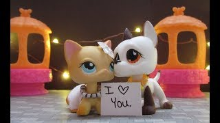 LPS: You Belong With Me {Music Video}