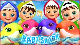 🔴 Baby Shark , Rain Rain Go Away  , Wheels on the Bus , Happy Birthday Song - Banana Cartoon