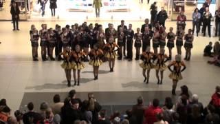 preview picture of video 'Westpark Ingolstadt 2013 - Gr. Gardeteil 1 - FG Germanica Kösching e.V.'