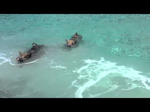 Create The Moment Travel Presents Sandals Emerald Bay