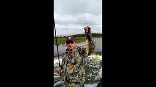 Хутора река оша рыбалка