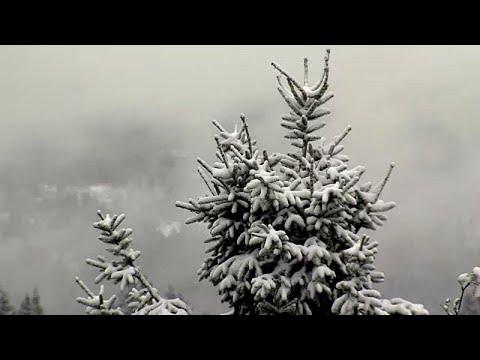 العرب اليوم - شاهد: الثلوج تُغطي ألمانيا رغم اقتراب الصيف
