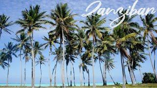 preview picture of video 'Travel Africa! 바람을 따라 탄자니아 잔지바르로! Jambiani beach in Zanzibar, Tanzania'