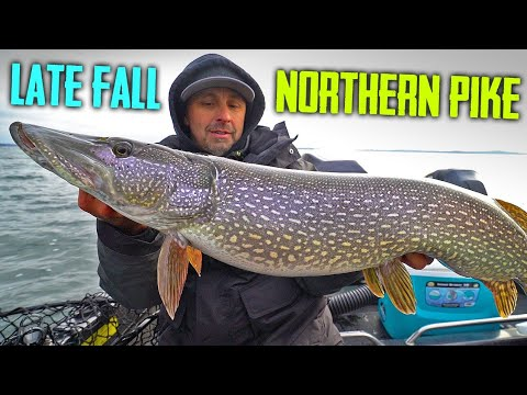 Casting Lures And Live Bait Fall Pike Fishing