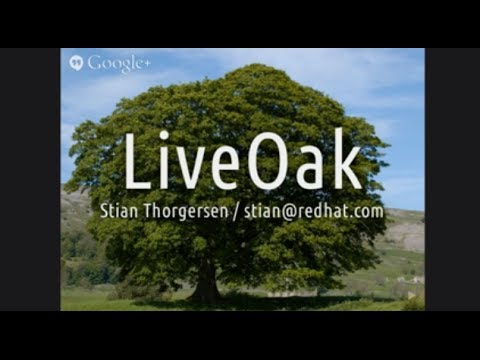 LiveOak: Is that a mobile backend as a service in your pocket?