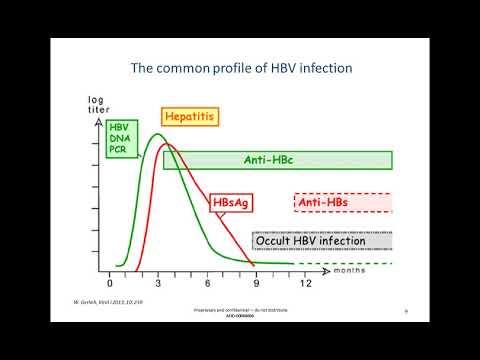 Vérszegénység z nedostatku vit b12