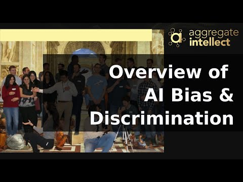 Overview of Bias and Fairness in AI