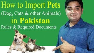 How to Import Pets (Dog, Cats & other Animals) in Pakistan Rules & Required Documents