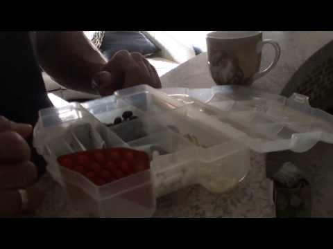 Instrukcja witaminy dopel włosy Hertz