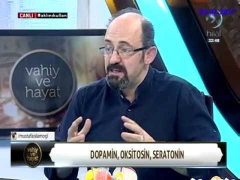 Dopamin, serotinin, oksitosin - Prof.Dr. Sinan CANAN-