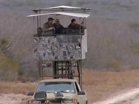 High Rack Deer Hunting in South Texas