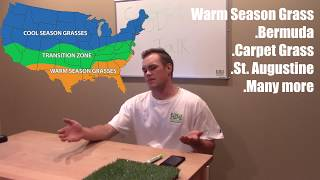 Whens The Best Time To Install Sod In Colorado?- Cool Season Grass