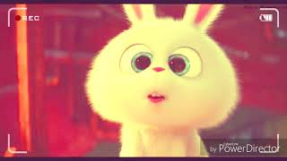 zootopia happy very cute dog baby for children -  តុក្តតាកូនក្មេង