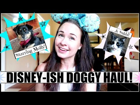 DISNEY DOG HAUL! Opening Magic Mail For MOLLY! (and Sukhi, Too!)