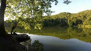 Pecheà La Carpe Lac Mervent