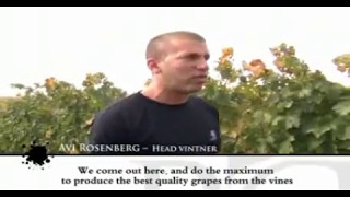 preview picture of video 'Adir Winery in Israel Travel Wine Tours'