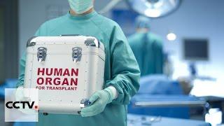 China creates 'Chinese mode' of organ donation