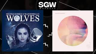 Shawn Mendes & Selena Gomez   If I Can't Have You  Wolves ( Mashup By SGW Mashups )