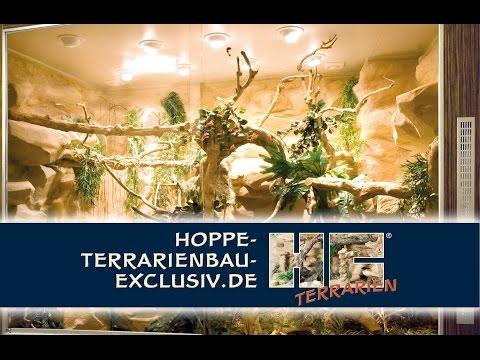 Exclusives Terrarium für das anspruchsvolle Ambiente