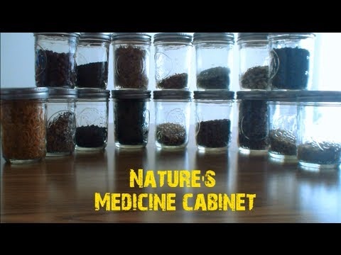 Video Medicine Cabinet (Red Clover)