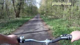 preview picture of video 'Street View in der Pfalz - Mit dem Fahrrad durch den Schwegenheimer Frühlingswald - GoPro Video'