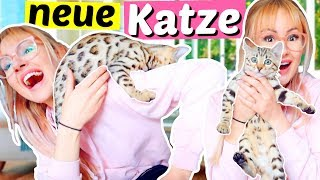 Ich bekomme eine Baby Katze  Bengal Katze   ViktoriaSarina