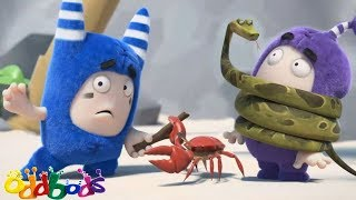 Oddbods Full Episode - Oddbods Full Movie   Marooned   Funny Cartoons For Kids