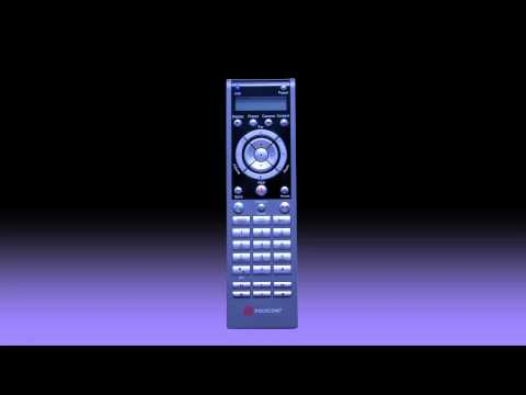 How to use the Polycom HDX Remote Control