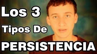 Video: Tipos De Persistencia (Ciega, Aleatoria y Planeada)