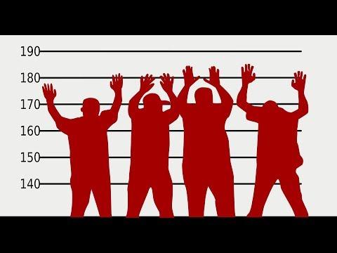 Формы соучастия в преступлении