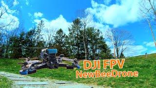 Stay home FPV /newbeedrone /rotor riot/ DJI FPV