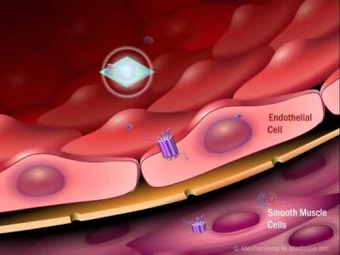 Mit zunehmendem Alter verringerte sich der Blutdruck bei Kindern