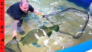 CATCHING 1,000 PACU for FOOD! **Pacu Ribs**