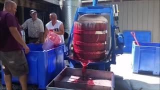 Frontenac Wine Pressing Lindwedel Winery Branson, Missouri
