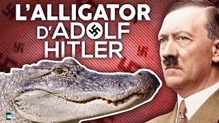 """#saturne #alligator  Retrouvez moi sur twitch : https://www.twitch.tv/notabenemovies  Vous l'avez peut-être vu passé sur vos réseaux sociaux, dans le journal, à la radio ou la TV, il s'est passé un truc de fou le 22 Mai 2020. Ce truc de ouf, qui a été relayé par tous les médias, c'est la mort d'un animal à l'histoire incroyable mais vraie, la mort...d'un alligator ! Mais pas n'importe lequel ! On dit de lui qu'il était l'alligator d'Hitler !   Cette description contient des liens Amazon d'affiliation. En cliquant dessus, je suis susceptible de percevoir une commission sur vos achats.  Vous pouvez acheter mes ouvrages en suivant les liens :   - """"Les pires batailles de l'Histoire"""", Livre aux éditions Tallandier : https://amzn.to/2OyiY32  - Nota Bene, Tome 1 """"petites histoires grands destins"""" (BD aux éditions Soleil) : https://amzn.to/2CESyVh  - Nota Bene, Tome 2 """"A la rescousse de l'Histoire"""" (BD aux éditions Soleil) : https://amzn.to/2Bkbszu  Retrouvez moi sur twitch : https://www.twitch.tv/notabenemovies Facebook : http://facebook.com/notabenemovies Twitter : https://twitter.com/NotaBeneMovies Instagram : https://www.instagram.com/notabenemovies  Pour discuter avec la communauté : discord : https://discord.gg/Uv8Endf  Pour partager des moments musicaux ensemble: Plug.DJ : https://plug.dj/notabene/  En savoir plus :    Un chouette article sur l'Histoire du zoo de Berlin pendant la seconde guerre mondiale : https://www.warhistoryonline.com/instant-articles/war-zone-zoo-berlin-zoo.html"""