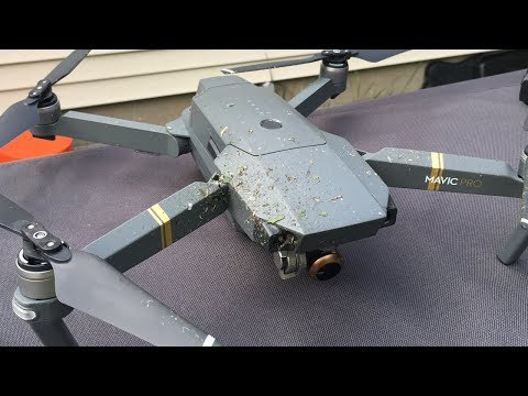 Drone Cuts Hornet Nest In Half