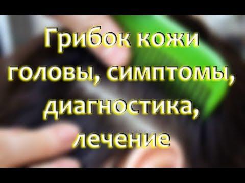 Gribok der Nägel auf den Daumen der Beine als zu behandeln