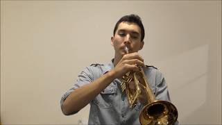 もののけ姫 Princess Mononoke  Trumpet Cover